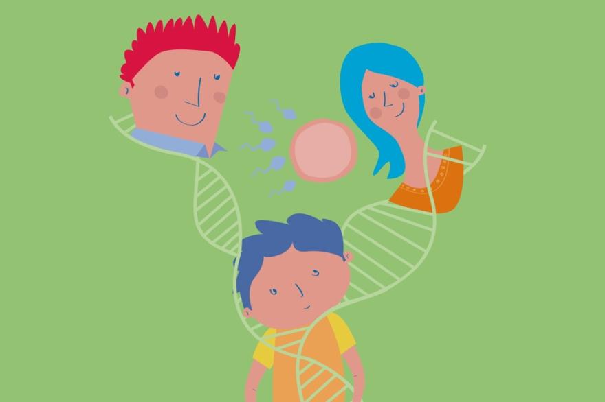 genoma04