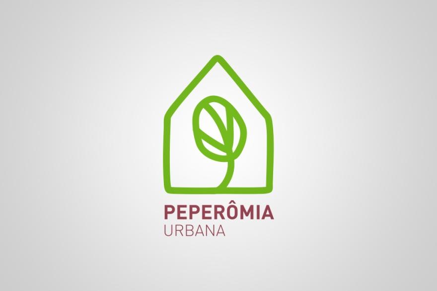 peperomia01