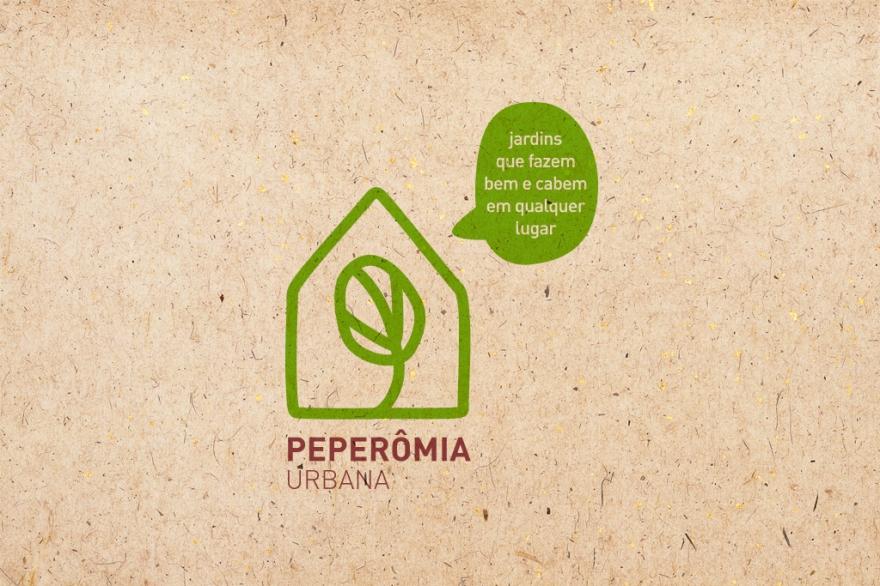 peperomia03